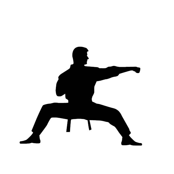 Martial Arts at S. Elgin Parks & Rec