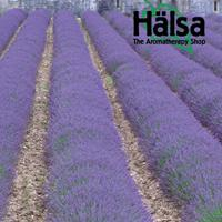 Halsa - The Aromatherapy Shop